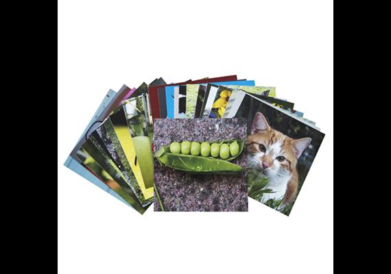 Akzente Verlag Klappo Zub. Vorlagenset Fotos Basis 2