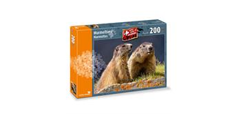 Carta Media Puzzle Murmeltiere 200 tl.