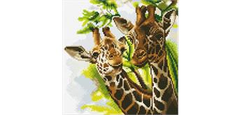 """Crystal Art Kit """"Freundliche Giraffen"""" 30 x 30 cm, mit Rahmen"""