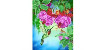 "Crystal Art Kit ""Kolibri"" 40 x 50 cm, mit Rahmen"