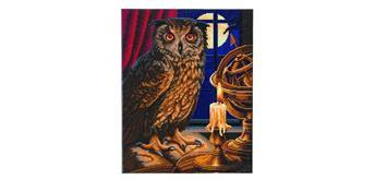 "Crystal Art Kit ""The Astrologer Owl"" 40 x 50 cm, mit Rahmen"