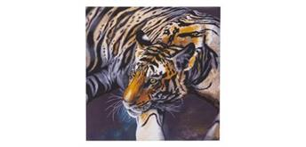 "Crystal Art Kit ""The Tiger"" 70 x 70 cm, mit Rahmen"