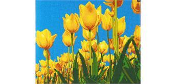 "Crystal Art Kit ""Tulips"" 40 x 50 cm, mit Rahmen"