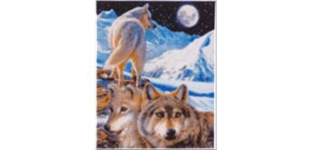 Crystal Art Leinwand Der Wächter 40 x 50 cm