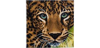 Crystal Art Leinwand Leopard 30 x 30 cm