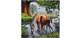 Crystal Art Leinwand Ponys 30 x 30 cm