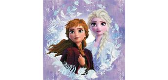 Diamond Dotz Disney Frozen 2 Sisters 40 x 40 cm