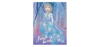 Diamond Dotz Disney Frozen II Free to be me 65 x 50 cm