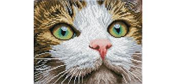 Diamond Dotz Katzenschönheit 27.7 x 35.5 cm
