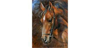 Diamond Painting Pferd 40 x 30 cm