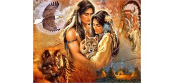Diamond Painting Set FZX497 Indian Wolf Square Stones 50 x 40 cm