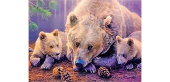 Diamond Painting Set GM1046 Bears 50 x 40 cm