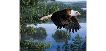 Diamond Painting Set RA3062 Eagle 50 x 40 cm