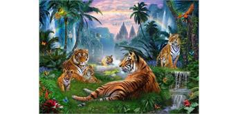 Diamond Painting Set Y0492 Tigers 50 x 40 cm