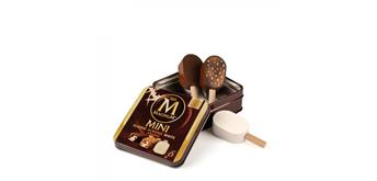 Erzi 14020 - Eis Magnum Minis in Dose