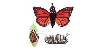 Folkmanis Handpuppe 3073 - Metamorphose Schmetterling