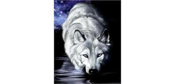 Malen nach Zahlen Set KTL934 Wolf 40 x 30 cm
