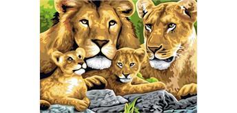 Malen nach Zahlen Set Lions 50 x 40 cm