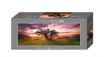 Puzzles 2000 -2999 Teile
