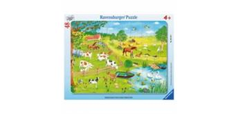 Ravensburger Puzzle 06145 Spaziergang