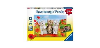 Ravensburger Puzzle 07626 Katzen auf Entdeckungsreise
