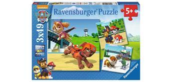 Ravensburger Puzzle 09239 Paw Patrol Team auf vier Pfoten