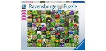 Ravensburger Puzzle 15991 - 99 Kräuter und Gewürze