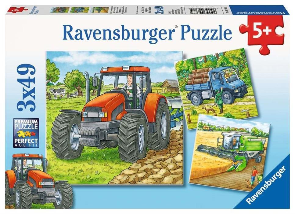 Große Puzzle