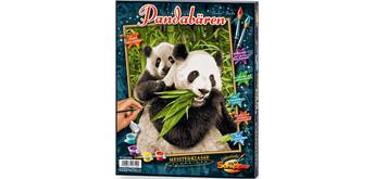 Schipper - Malen nach Zahlen - Pandabären