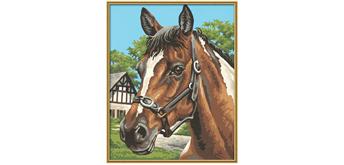 Schipper - Malen nach Zahlen - Pferdeporträt