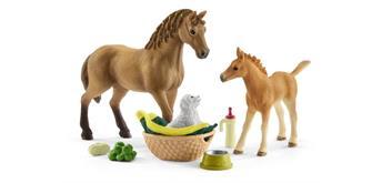 Schleich Horse Club 42432 Set Tierbaby-Pflege