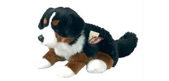 Teddy Hermann Berner Sennenhund sitzend, ca. 29 cm