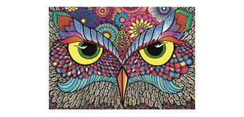 Wentworth Wooden Puzzles - It's a Hoot! - Micro