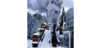 Wentworth Wooden Puzzles - Snow,Steam & Trees - 250 tlg.